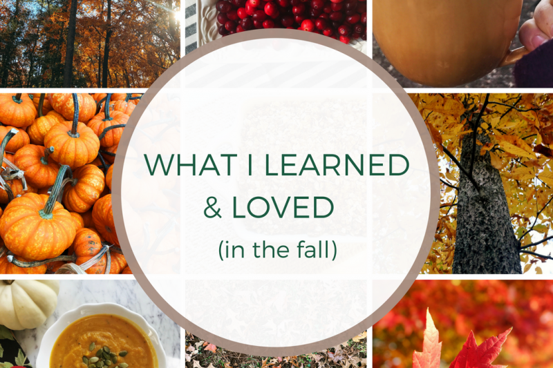 What I Learned & Loved in the Fall.