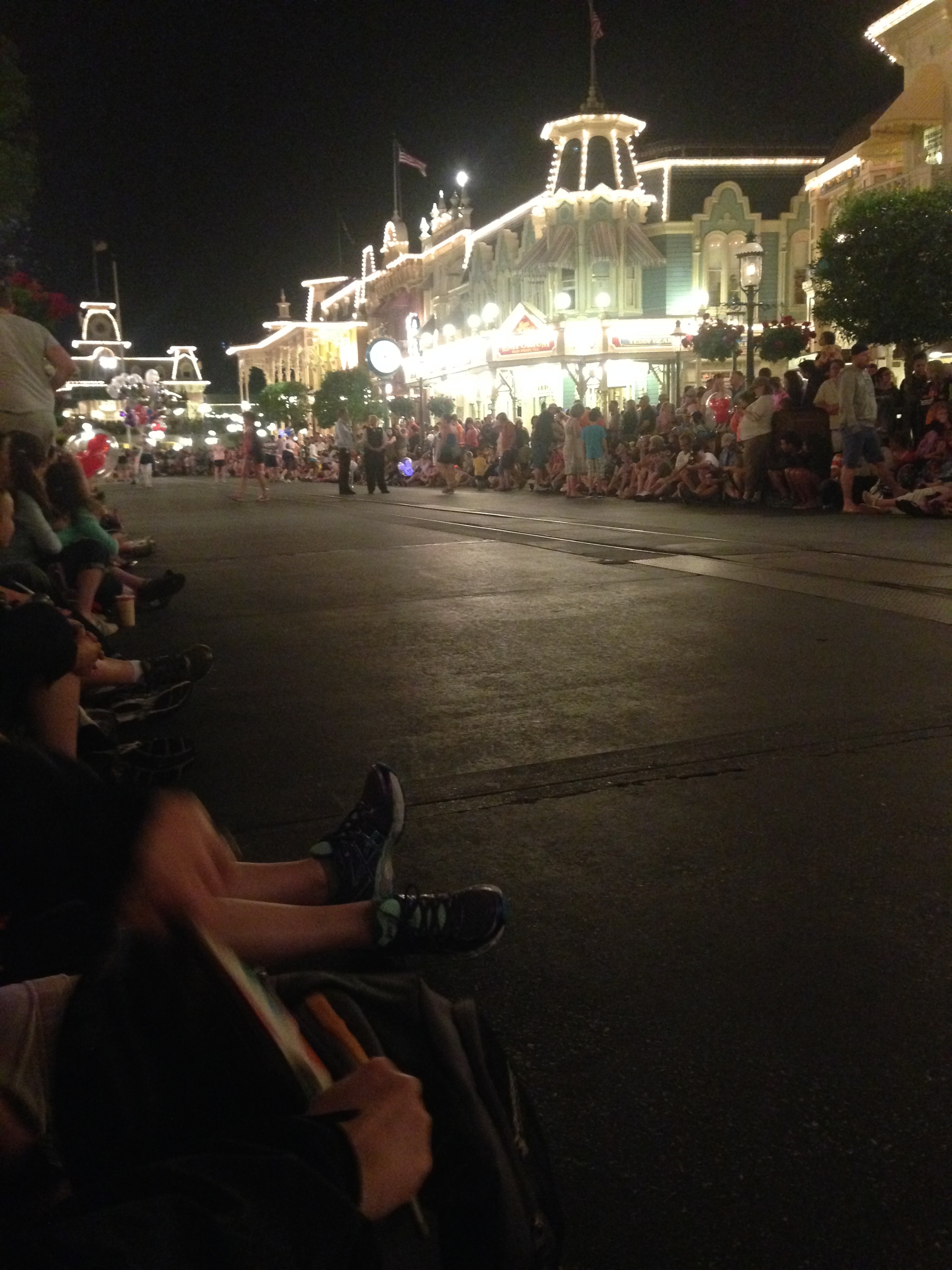 The Main Street Electrical Parade-- so fun.