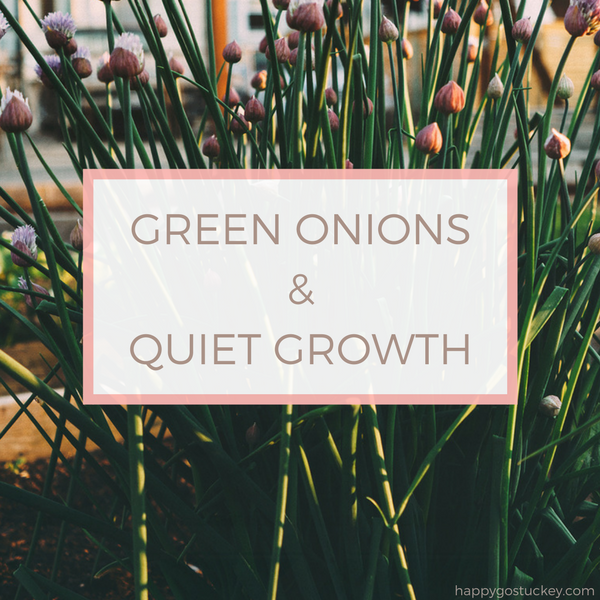 Green Onions and Quiet Growth