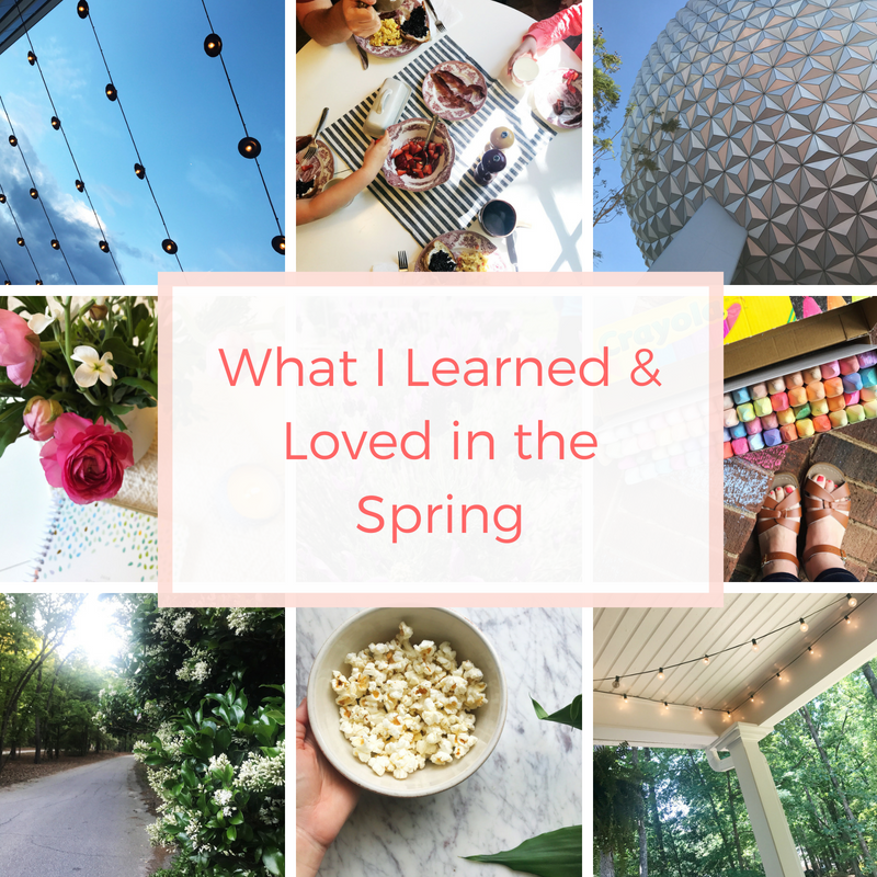 What I Learned & Loved in the Spring